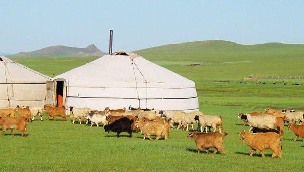 mongolia-320